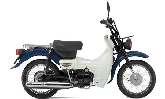 バーディ50(セル付き)